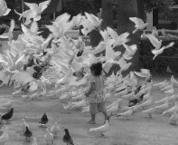 dziecko - fotografia